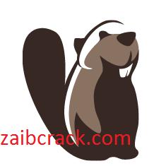 DBeaver 21.2.2 Crack Plus License Number Free Download 2021